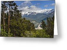 Pine Trees In The Rocky Mountain National Park Greeting Card