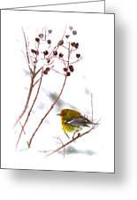 Pine Warbler-img-2143-001 Greeting Card
