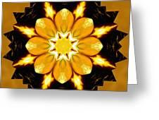 Pineal Breakthrough Greeting Card