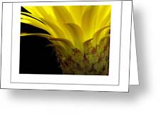 Pineapple Flower Poster Greeting Card