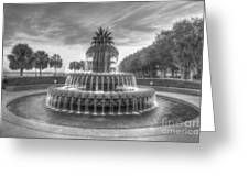 Pineapple Fountain In Black And White Greeting Card