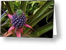 Pineapple Royal Greeting Card