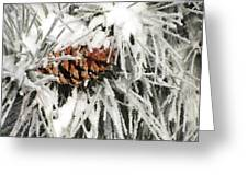 Pinecone In Snow Greeting Card