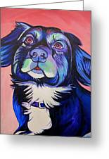Pink And Blue Dog Greeting Card