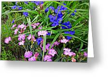 Pink And Blue Garden Greeting Card