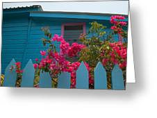 Pink And Blue House Greeting Card