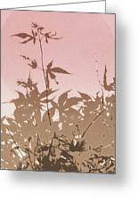 Pink And Brown Haiku Greeting Card