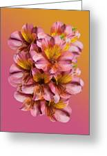 Pink And Gold Greeting Card