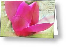 Pink And Green Greeting Card