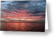 Pink And Grey At Sea - Sunrise Panorama  Greeting Card
