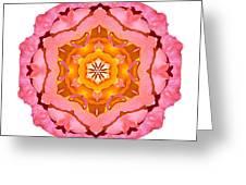 Pink And Orange Rose I Flower Mandala White Greeting Card
