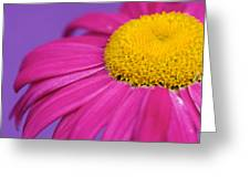 Pink And Purple Smile Greeting Card