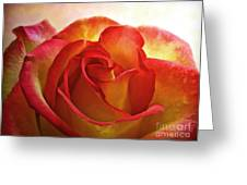 Pink And Yellow Rose - Digital Paint Greeting Card