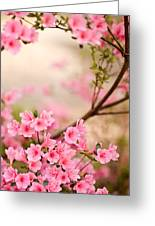 Pink Azalea Bush Greeting Card