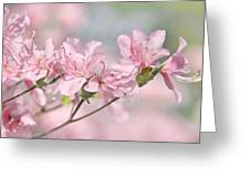 Pink Azalea Flowers In The Spring Greeting Card