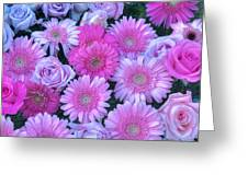 Pink Background Daisy And Roses Greeting Card