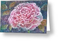 Pink Beauty Greeting Card by Barbara Jewell