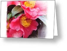 Pink Camellia. Elegant Knickknacks Greeting Card by Jenny Rainbow