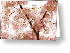 Pink Cherry Blossoms - Impressions Of Spring Greeting Card