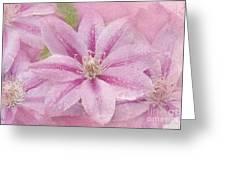 Pink Clematis Profusion Greeting Card