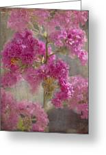Pink Crape Myrtle Greeting Card