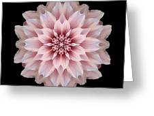 Pink Dahlia Flower Mandala Greeting Card by David J Bookbinder
