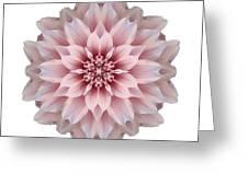 Pink Dahlia I Flower Mandala White Greeting Card