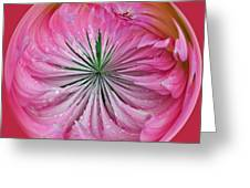Pink Dahlia Orb Greeting Card