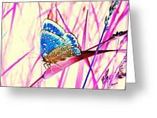 Pink Dream Greeting Card