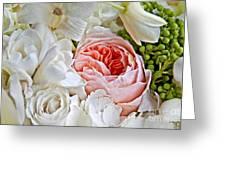 Pink English Rose Among White Roses Art Prints Greeting Card