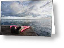 Pink Fins On Dock Greeting Card
