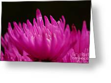 Pink Fire 3 Greeting Card