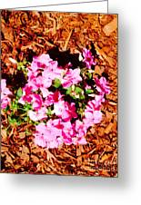 Pink Flower Garden Greeting Card