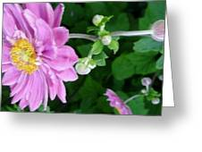 Pink Flower Shiver Greeting Card