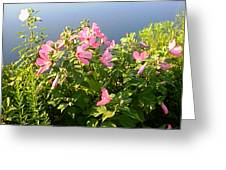 Pink Flowers By The Lake Greeting Card