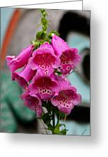 Pink Foxglove Greeting Card by Karon Melillo DeVega