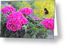 Pink Geraniums And Butterfly Greeting Card
