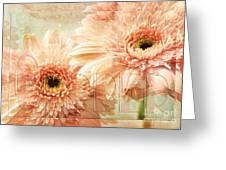 Pink Gerber Daisies 3 Greeting Card