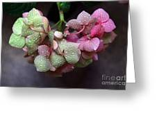 Pink Green And Rain Greeting Card