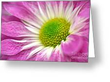 Pink Hope Greeting Card