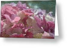 Pink Hydrangea Photoart I Greeting Card