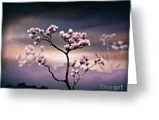 Pink Magnolia - Dark Version Greeting Card