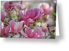 Pink Magnoloias In Bloom Greeting Card