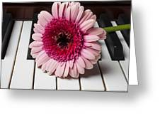 Pink Mum On Piano Keys Greeting Card
