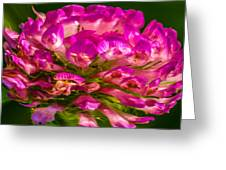Pink Mystery Flower Greeting Card