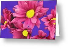 Pink On Purple Greeting Card