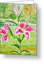 Pink Oriental Lillies Greeting Card