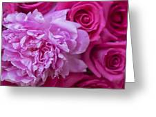 Pink Peonies And Pink Roses Greeting Card