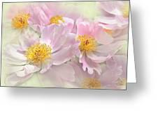 Pink Peony Flowers Parade Greeting Card