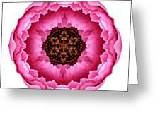 Pink Peony I Flower Mandala White Greeting Card